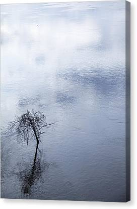 Spring Flood In Georgia Canvas Print