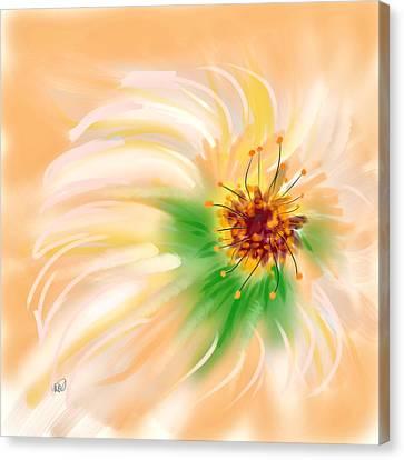 Spring Flower Canvas Print by Angela A Stanton