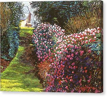 Spring Flower Fantasy Canvas Print by David Lloyd Glover