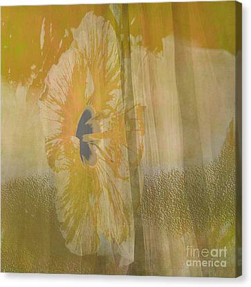 Spring Flower Unveiling Canvas Print by Beverly Guilliams