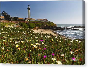 Spring Flowers At Pigeon Point Canvas Print by George Oze