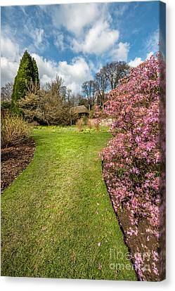 Spring Garden Canvas Print by Adrian Evans