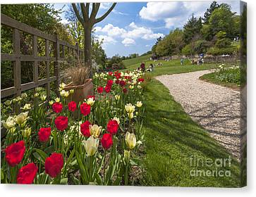 Spring Garden Canvas Print by Donald Davis