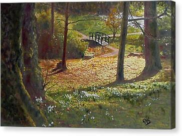 Spring Glow At  Kailzie Gardens Peebles Canvas Print by Richard James Digance