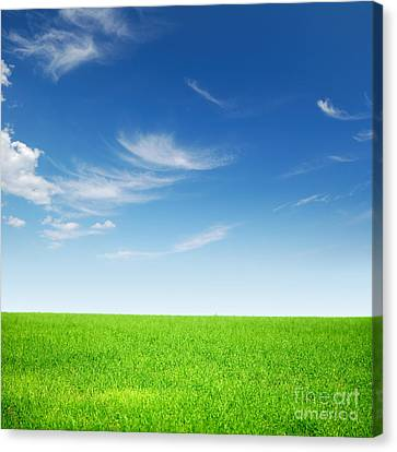 Spring Green Landscape Canvas Print by Boon Mee