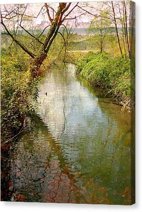 Spring Happening Canvas Print by Shirley Sirois