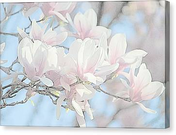 Canvas Print featuring the photograph Spring Has Arrived 3 by Susan  McMenamin