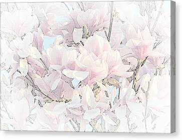 Canvas Print featuring the photograph Spring Has Arrived II  by Susan  McMenamin