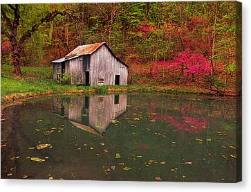 Spring Has Come To The Appalachia Canvas Print by Bijan Pirnia