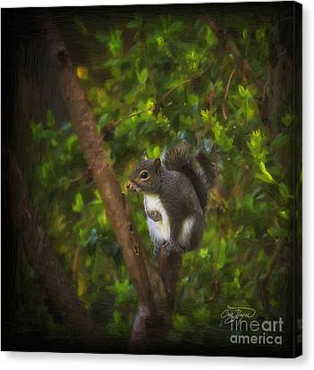 Spring Has Sprung Canvas Print by Cris Hayes