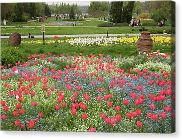 Spring In Herastrau Park In The City Canvas Print by Martin Zwick