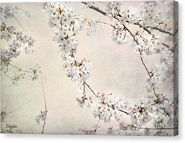 Spring In The City Canvas Print by Eena Bo
