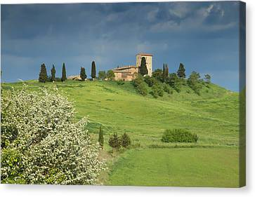Spring In The Tuscany Canvas Print by Jaroslav Frank