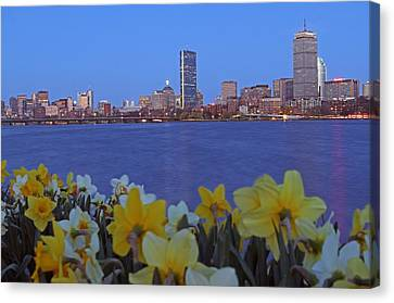 Spring Into Boston Canvas Print by Juergen Roth