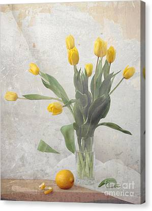 Spring Canvas Print by Irina No