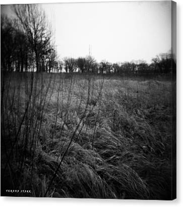 Spring Is Near Holga Photography Canvas Print by Verana Stark