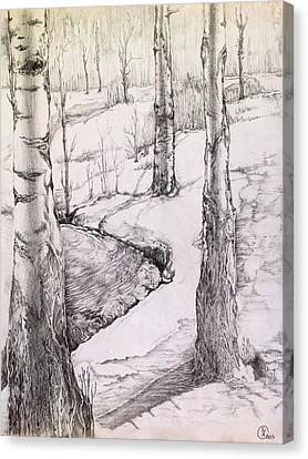 Spring Canvas Print by Iya Carson