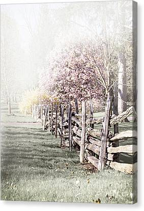 Spring Landscape With Fence Canvas Print by Elena Elisseeva