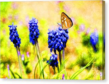Spring Magic Canvas Print by Darren Fisher