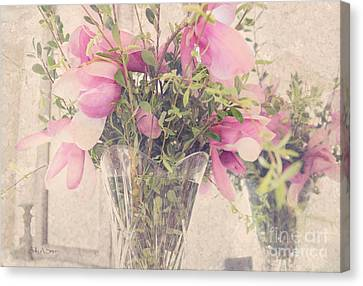 Spring Magnolias Canvas Print by Sally Simon