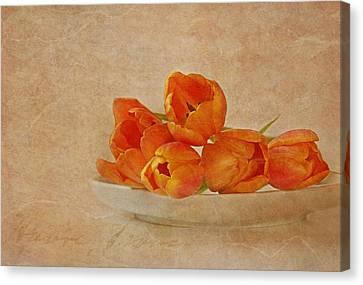 Spring Menu Canvas Print by Claudia Moeckel