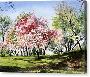 Spring Morning Canvas Print by Barbara Jewell