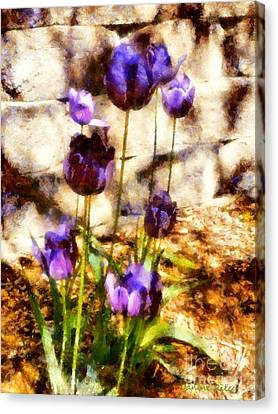 Spring Morning Tulips Canvas Print by Janine Riley