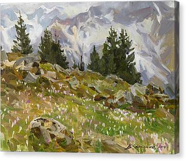 Spring On A Northern Slope Canvas Print by Victoria Kharchenko