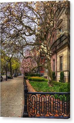 Spring On Commonwealth Avenue - Boston Canvas Print by Joann Vitali