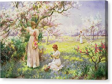 Spring   Picking Flowers Canvas Print by Alfred Augustus I Glendenning