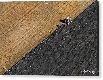 Spring Plowing Canvas Print by Robert Lacy