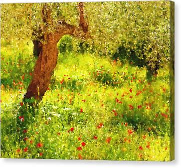 Spring Poppies Impressionism Canvas Print by Georgiana Romanovna