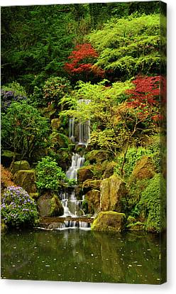 Azaleas Canvas Print - Spring, Portland Japanese Garden by Michel Hersen