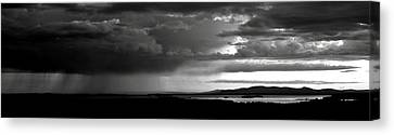 Spring Rain Canvas Print by Greg DeBeck