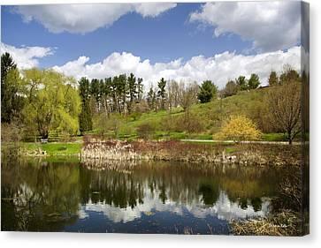 Spring Reflection Landscape Canvas Print by Christina Rollo