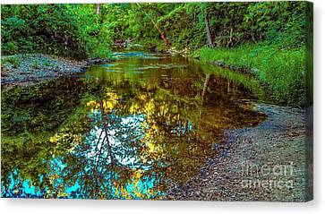 Spring Reflection  Canvas Print by Peggy Franz