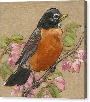 Spring Robin 3 Canvas Print
