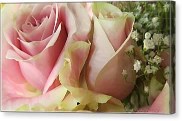 Spring Romance Pink Roses Canvas Print by Danielle  Parent