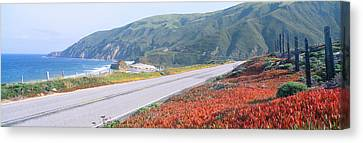 Spring, Route 1, California Coast Canvas Print by Panoramic Images