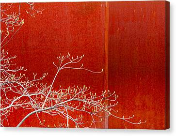 Spring Rust Canvas Print