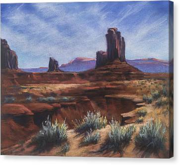 Spring Sage Monument Valley Az Canvas Print