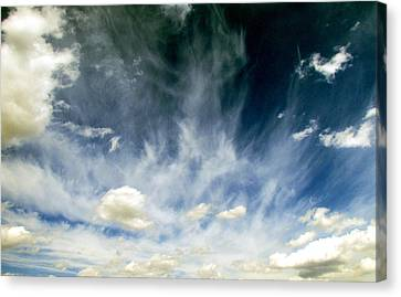 Spring Sky Canvas Print by Andrea Dale
