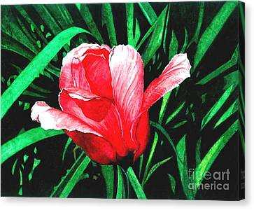 Canvas Print featuring the painting Spring Solo by Barbara Jewell