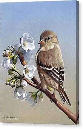 Canvas Print featuring the painting Spring Splendor by Mike Brown