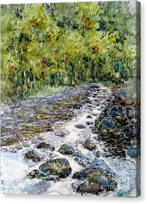 Spring Stream Canvas Print by Louise Peardon