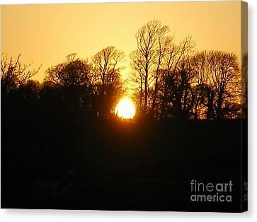 Spring Sunset. Canvas Print by Ann Fellows