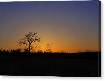 Spring Sunset Pops Through Trees Canvas Print