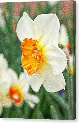 Spring Texture Canvas Print by Cathie Tyler