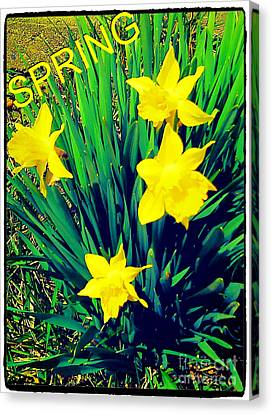 Spring Canvas Print by Thommy McCorkle