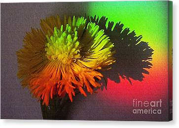 Spring Through A Rainbow Canvas Print by Martin Howard